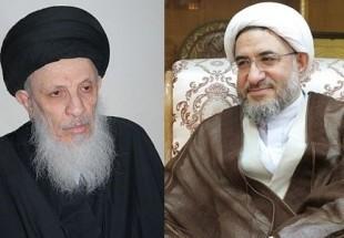 Photo of Ayatollah Araki meets Ayatollah Seyyed Mohammad Saeed Hakim